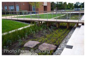 The Bullis School Bioretention-Pond-web